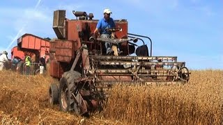 Download Irish Harvest Day - Rosemount Vintage Rally Video