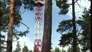 Download Видео фильм Сохранение лесов Video