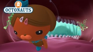 Download Octonauts: The Cave with Teeth! Video