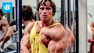 Download Best Bodybuilder of All Time | Arnold Schwarzenegger's Blueprint Training Program Video