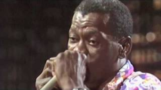 Download Canned Heat - Clarence Gatemouth Brown - Live at Montreux Video