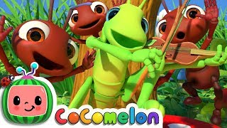 Download The Ant and the Grasshopper | CoCoMelon Nursery Rhymes & Kids Songs Video
