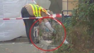 Download BERLIN: Junge von Baumstumpf erschlagen - Täter gefasst Video