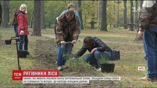 Download Кияни власноруч висадили дві тисячі саджанців сосни у Парку партизанської слави Video