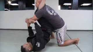 Download 4 Tips to Pass ANY Guard Video