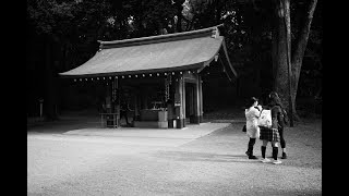 Download Panasonic Lumix GX9 Street Photography Review - Tokyo Video