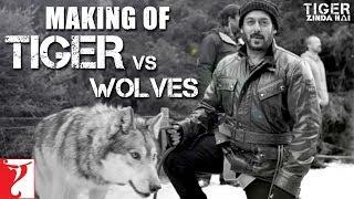Download Tiger vs Wolves | Making of Tiger Zinda Hai | Salman Khan | Katrina Kaif | Ali Abbas Zafar Video