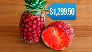 Download Most EXPENSIVE Fruits In The World! Video
