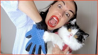 Download TESTING WEIRD CAT PRODUCTS! Video