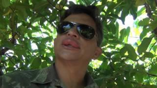 Download DUAS HORAS DEPOIS DAS FERROADAS, PENSE EM UM MENINO DESGRAÇADO... KKKKKKKKKKKKKKKKKKKKKKKKK. Video