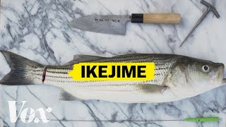 Download The right way to kill a fish Video