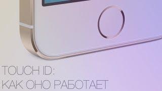Download Touch ID: как работает сканер отпечатков пальцев в iPhone 5s Video