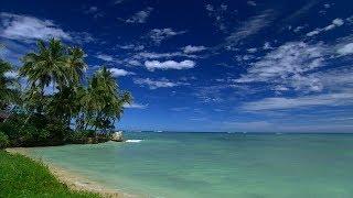 Download Hawaii (HD) Video