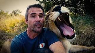 Download We have something to say... #AskMeg   The Lion Whisperer Video