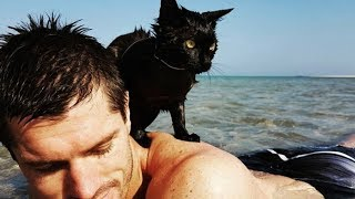Download Couple Take New Rescue Cat To The Beach And Make A Startling Discovery Video