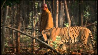 Download The Tiger And The Monk - Trailer Video