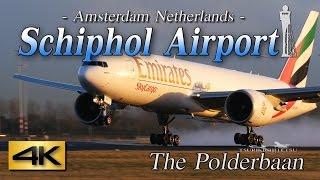 Download 【4K】1H 65Airliner's!! Amazing Schiphol Airport-Ⅰ@Polderbaan Video