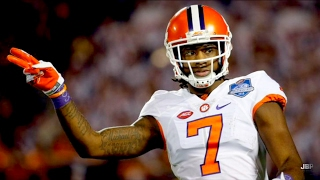 Download Best WR in College Football || Clemson WR Mike Williams 2016 Highlights ᴴᴰ Video