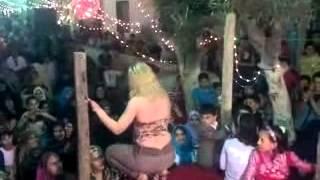 Download السيد غزال والنجمه شهد وابوبطه بيرقص احلى حصان Video