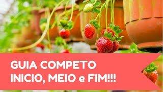 Download MORANGO EM VASO - COMPLETO!!! Video