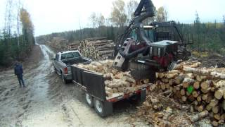 Download 330 hp firewood processor Video