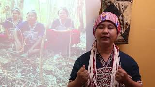 Download #IndigenousWomen, Visible women Asia 2018 Video