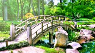 Download Relaxing Reiki Healing Music. Meditation Calming Music for Balance and Concentration, Relax, Yoga Video