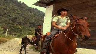 Download El Agricultor Harold Motta Video