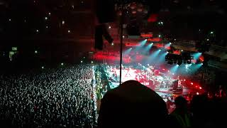 Download Pearl Jam en Chile 2018 / Animal Video