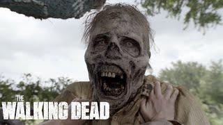 Download Opening Minutes of Season 5, Episode 11 | Fear the Walking Dead Video