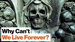 Download Why Don't Humans Live for More than 100 Years? | Physicist Geoffrey West Video