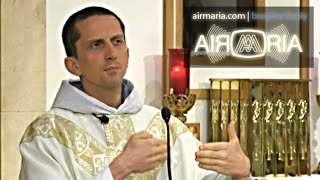 Download Doctrinal Development, Yes, Contradiction, No - Aug 21 - Homily - Fr Matthias Video