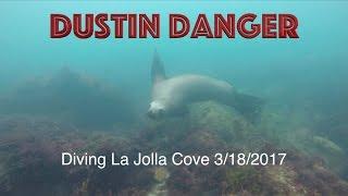 Download Scuba Diving - La Jolla Cove, San Diego, California 3/18/2017 Video