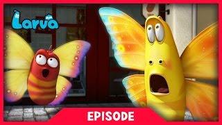 Download LARVA - WILD WILD WORLD | Cartoon Movie | Cartoons For Children | Larva Cartoon | LARVA Official Video