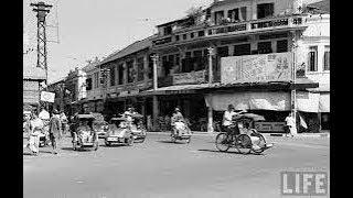 Download Action Phim Viet Nam ( Bui Doi Cho Lon ) Video