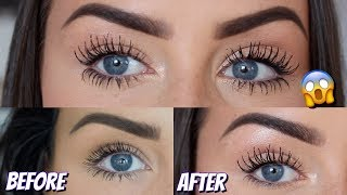 Download HOW TO GROW YOUR EYELASHES SO LONG   MIRACLE GROW FOR REAL - LOOK AT THE LENGTH OF MINE! Video