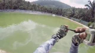 Download Daiwa ARDITO TR 3pc Casting Rod in action Video