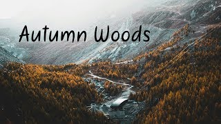 Download Autumn Woods | Beautiful Chill Mix Video