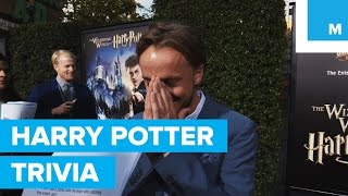 Download The Cast of Harry Potter Answer Harry Potter Trivia Video