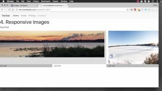 Download Bootstrap 4: images Video