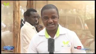 Download BREEDING CASH: AQUOFLO KENYA LTD. Video