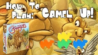 Download How To Play: Camel Up! Video