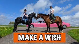 Download Dromen komen uit | PaardenpraatTV Video