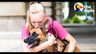 Download This Dog Stops His Mom's Panic Attacks | The Dodo Soulmates Video
