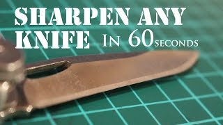 Download The Laziest Way to Sharpen Any Knife to Razor Sharp 2 Video