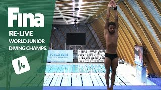 Download Re-Live - Day 7 Final - FINA World Junior Diving Championships 2016 - Kazan (RUS) Video