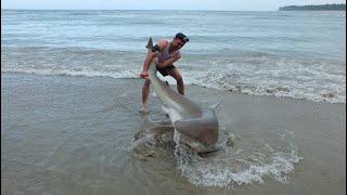 Download Land based Shark fishing NZ Video