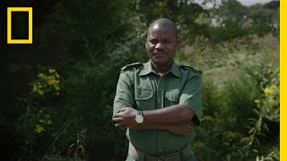 Download Fighting Wildlife Crime: The Unsung Heroes | National Geographic Video