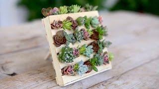 Download Popsicle Stick Mini Pallet w/ Succulents // Garden Answer Video