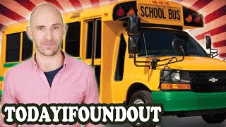 Download Why are School Buses Yellow and Why Dont They Have Seatbelts Video